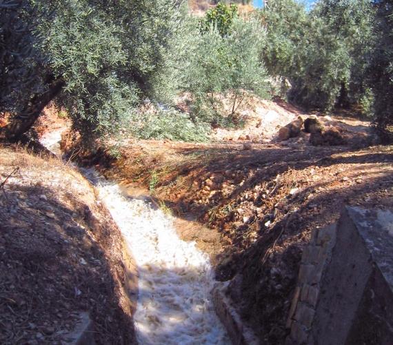 montenegro-expersa-sondeo-04